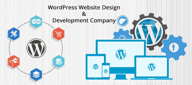 WordPress Website Design & Development Company Sialkot